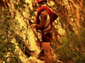 Unknown climber at the top of Treason Buttress in Tygerhoek Gorge ~ 1976 Photo thanks to Mike McKechnie collection.
